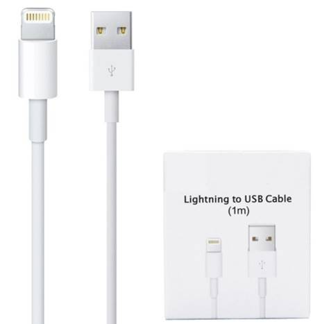 iPhone Lightning to USB Cable 1m